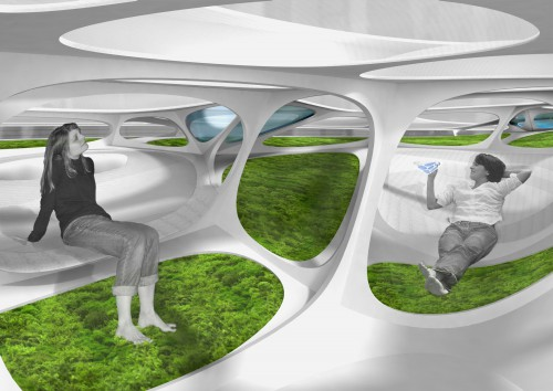 moos pavilion 02 interior